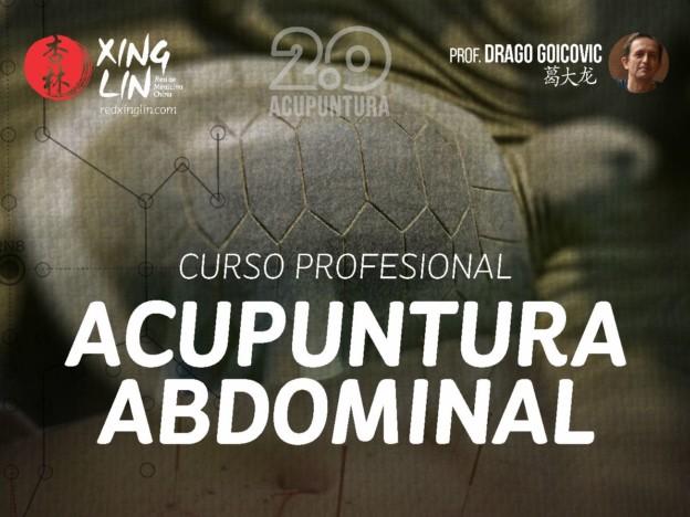 Curso Profesional de Acupuntura Abdominal course image