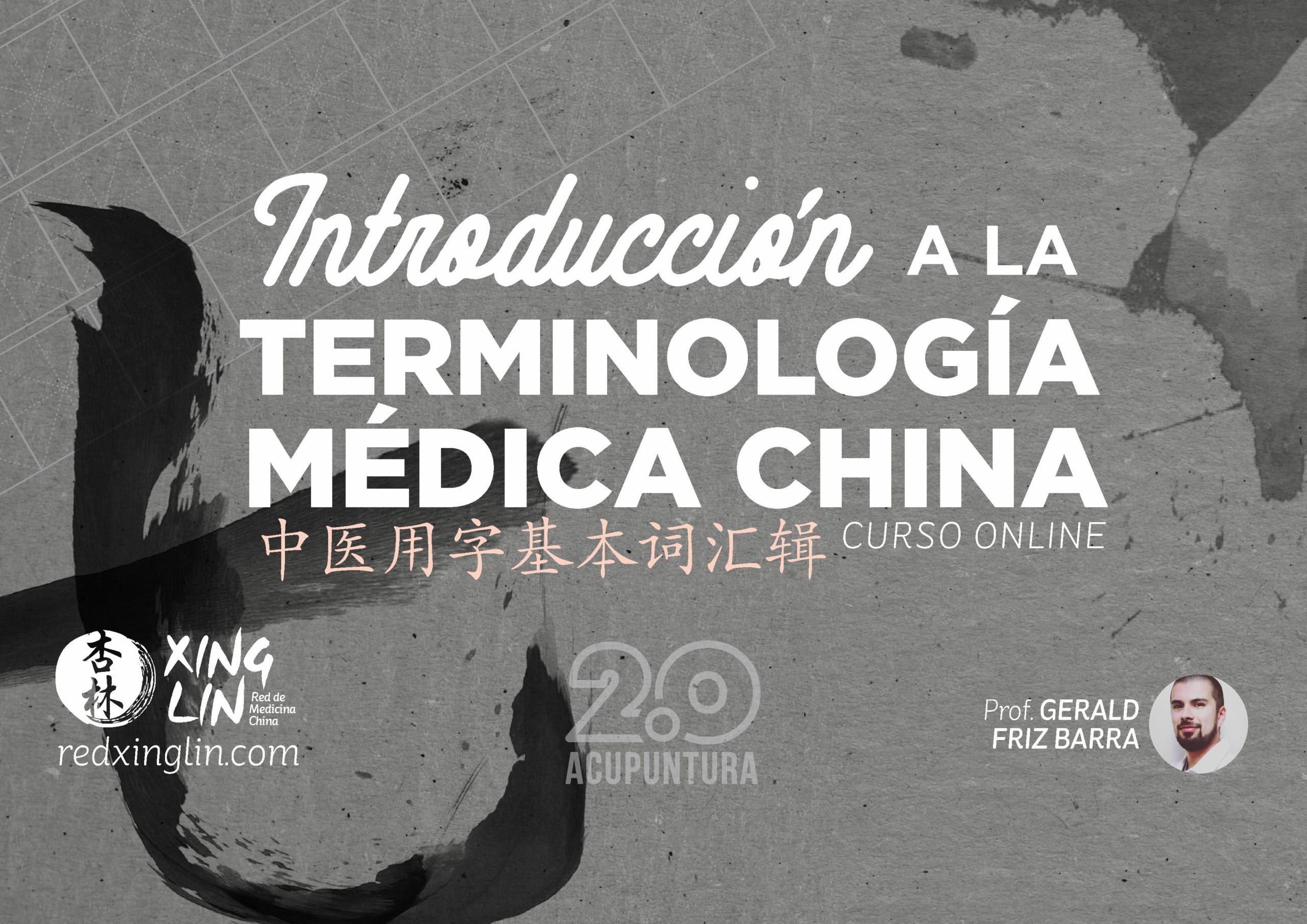 introducción a la terminología china