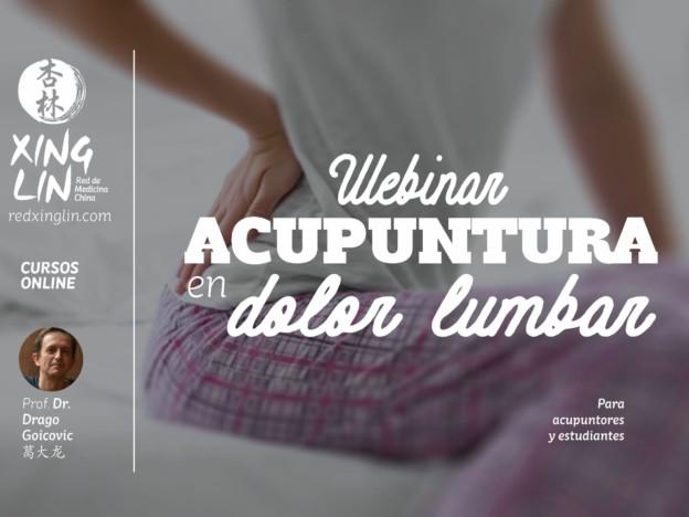 Webinar Tratamiento de dolor lumbar con Acupuntura course image