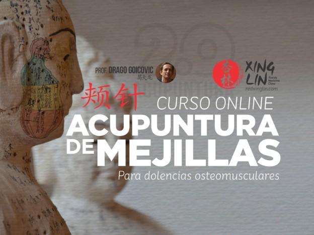 Curso Acupuntura de Mejillas Nivel 1 course image