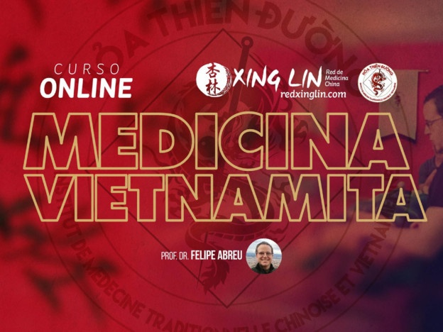 Curso de Medicina Imperial Vietnamita course image
